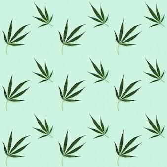 Cannabisbladeren geïsoleerd op lichtgroen