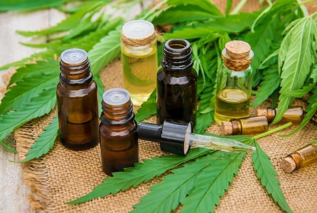 Cannabiskruid en bladeren voor behandelingsvloeistof, tinctuur, extract, olie. selectieve aandacht.