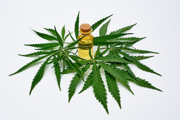 Cannabisolie-extract in cannabisbladeren op een witte ruimte.