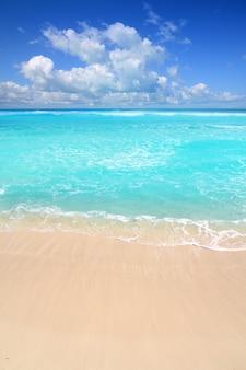 Caraïbische turkooise strand perfecte overzeese zonnige dag