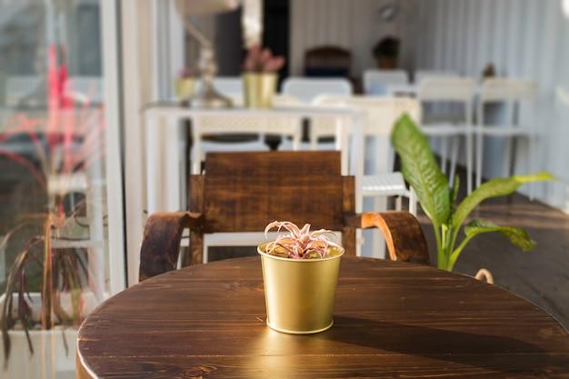 Cargo-container café met houten meubelset
