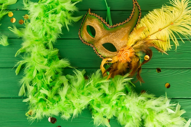 Carnaval-masker met veren