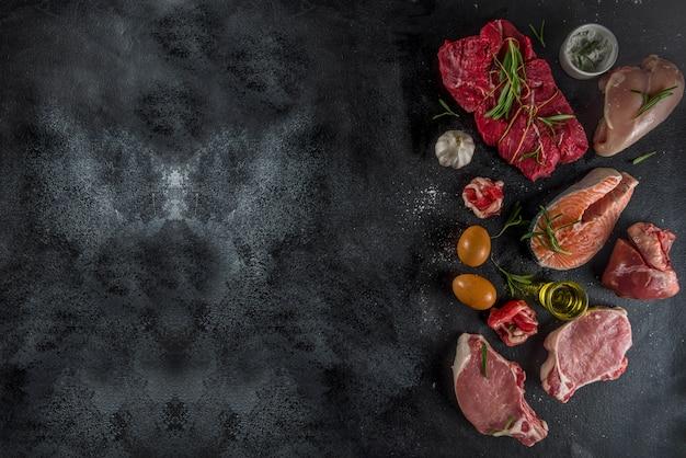 Carnivore eiwitdieet achtergrond