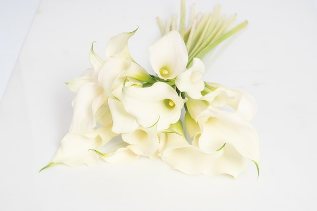 Cartucho blanco ramo