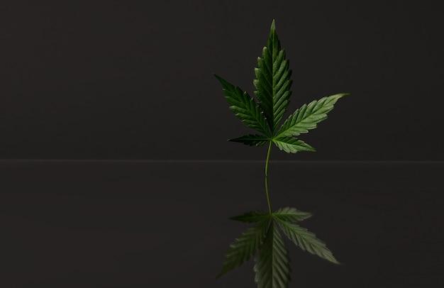 Cbd-hennepolie, infuus, bio-geneeskunde en ecologie, hennepplant, cannabisolie van medische extractie op donkere ruimte