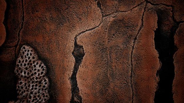 Cement muur textuur close-up voor background