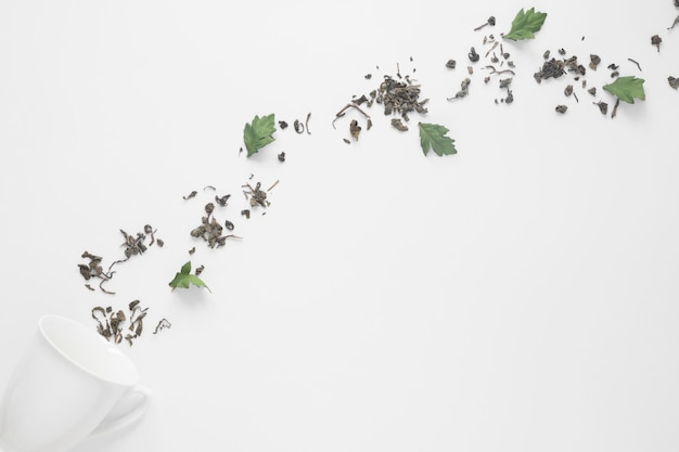 Ceramische kop met natuurlijke die kruiden op witte achtergrond worden geïsoleerd