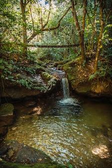 Cerro azul meambar national park (panacam) aan het yojoameer. honduras