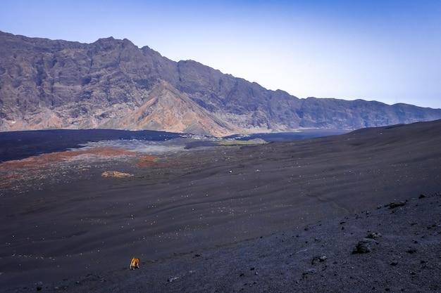 Cha das caldeiras en pico do fogo in kaapverdië, afrika