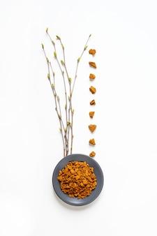 Chaga paddenstoel. samenstelling van stukjes berkenschimmel chaga in kom of plaat en berkentakjes met knoppenisolatie op witte achtergrond.