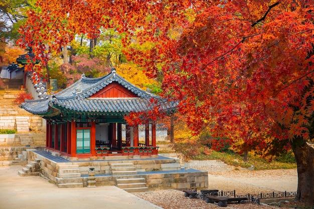 Changdeokgung palace in de herfst seoul zuid-korea