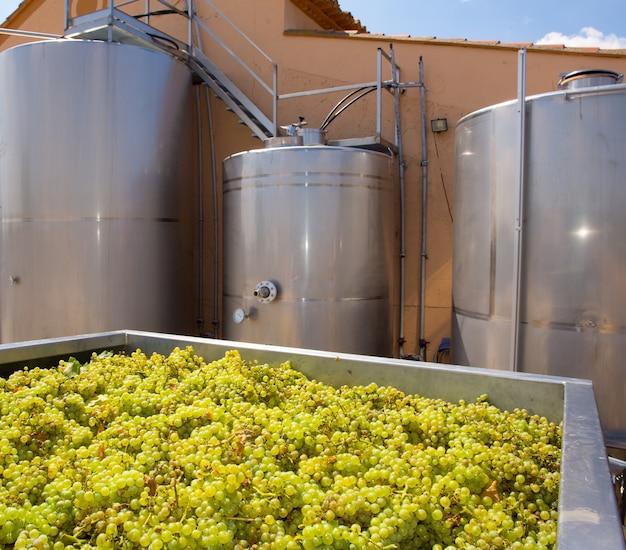 Chardonnay wijnmaken met druiven en tanks