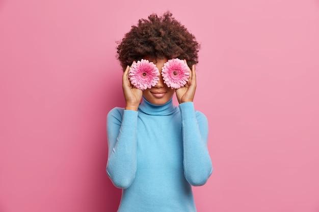 Charmante afro-amerikaanse vrouw met natuurlijke schoonheid, houdt twee gerbera's op de ogen, gekleed in blauwe coltrui, poses