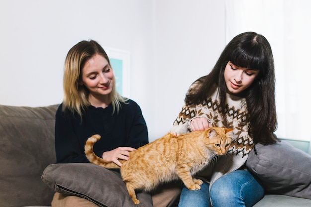 Charmante meisjes die met kat knuffelen
