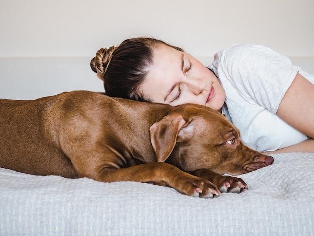 Charmante, schattige puppy van bruine kleur en een schattige vrouw. close-up, binnen. daglicht. concept van zorg, onderwijs, gehoorzaamheidstraining, het grootbrengen van huisdieren