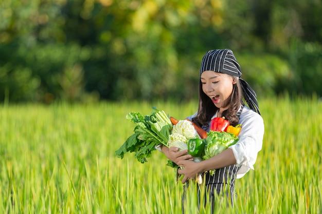 Chef-kok oogst verse producten van biologische boerderij