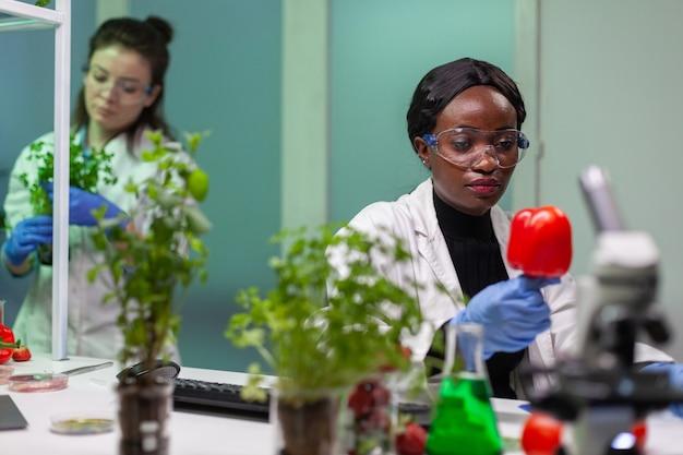 Chemicus die peper analyseert met pesticiden die farmaceutische medische expertise schrijft op notitieblok. biochemicus wetenschapper werkzaam in biotechnologie organisch laboratorium analyseren chemie experiment.