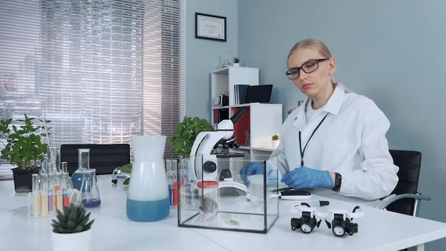 Chemielab: vrouwelijke wetenschapper die hamster organisch materiaal te eten geeft