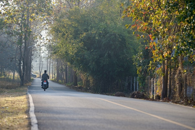Chiang mai road cuntry
