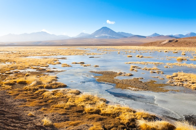 Chileens landschap, lagune en licancabur-vulkaan. chili panorama