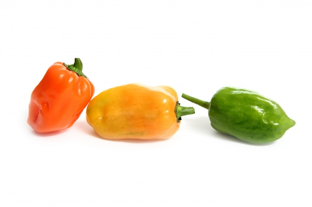Chili culinaire keuken plantkunde geniet van warmte