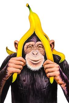 Chimpansee met een bananenschil op zijn hoofd