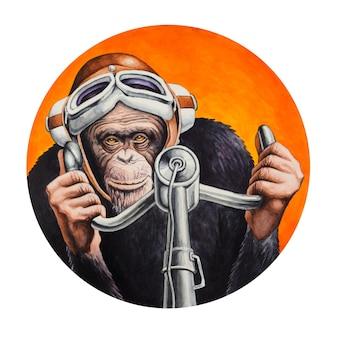 Chimpanseepiloot aan de besturing van het vliegtuig
