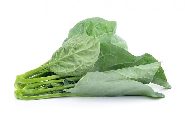 Chinese broccoli op witte ruimte