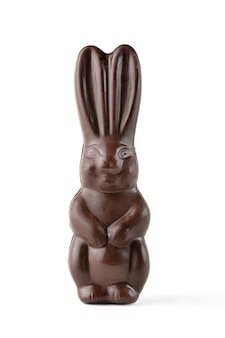 Chocolade paashaas geïsoleerd op een witte achtergrond.