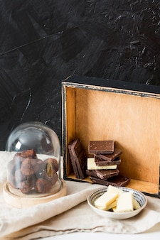 Chocoladetruffel in cacaopoeder