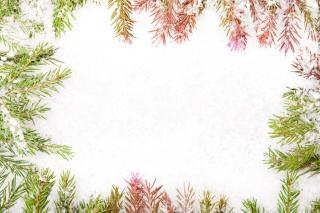 Christmas frame decor