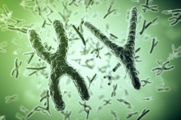 Chromosomen op wetenschappelijk. leven en biologie, geneeskunde. 3d-weergave