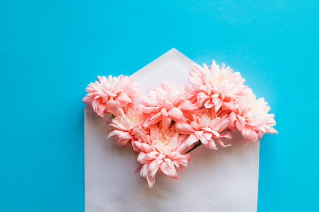 Chrysanten bloemen.