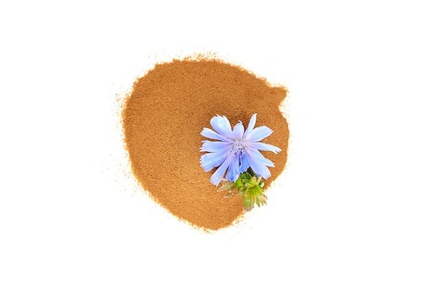 Cichorei wortel poeder met blauwe bloemen geïsoleerd op een witte muur bovenaanzicht