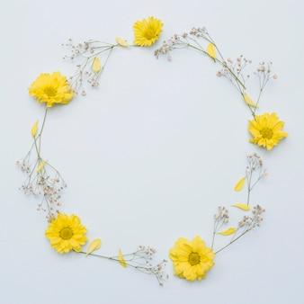 Cirkelkader met gele die bloemen wordt op witte achtergrond worden geïsoleerd gemaakt die