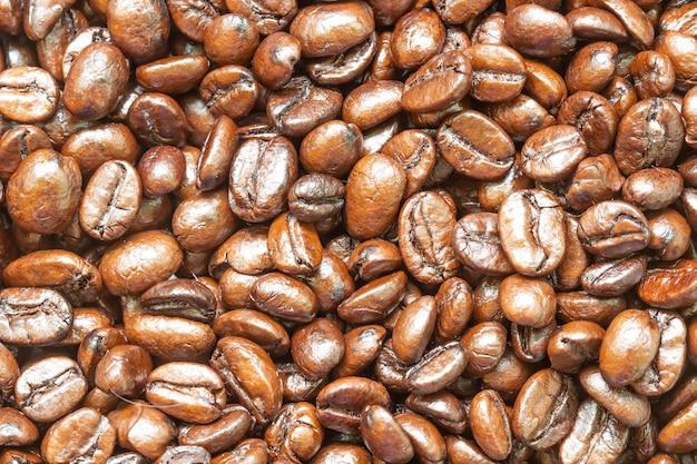 Civet koffie heldere ochtenddrank