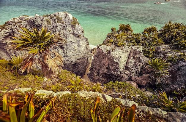 Cliff begroeid met tropische vegetatie en palmbomen zitstokken op de caribische zee in tulum in mexico.