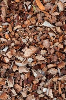 Close-up aan de droge bruine achtergrond van de kokosnotencoir schil voor installatie het groeien
