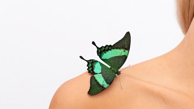 Close-up beeld van vlinder op schouder