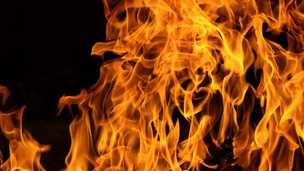 Close-up bosbrand, de achtergrond van de brandvlam