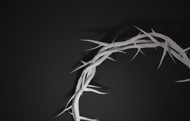 Close-up crown of thorns 3d-rendering lege ruimte donkere achtergrond