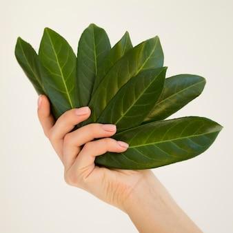 Close-up die van hand een blad houdt