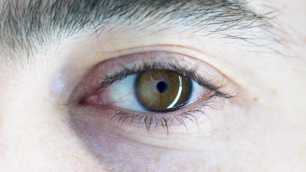 Close-up die van het bruine oog van een persoon is ontsproten