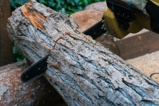 Close-up die van kettingzaag een groot logboek zagen, brandhout oogsten.