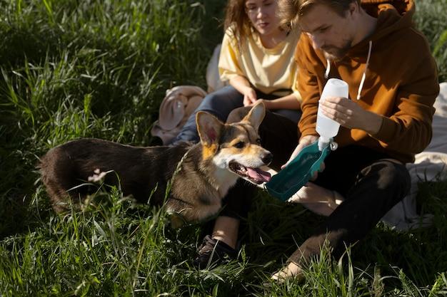Close-up eigenaren die honden water geven