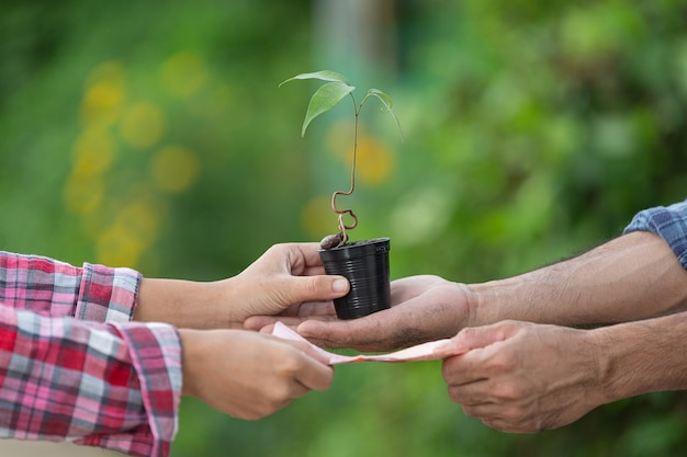 Close-up foto van geld wisselen met planten tussen klant en verkoper