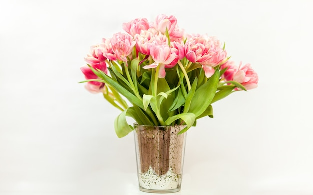 Close-up foto van grote bos roze tulpen tegen wit