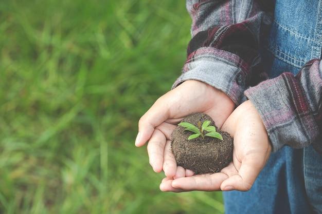Close-up foto van hand met plant