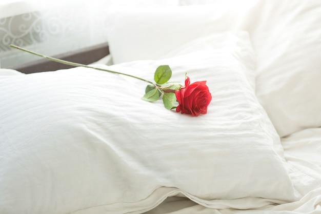 Close-up foto van rode roos liggend op wit kussen bij bed