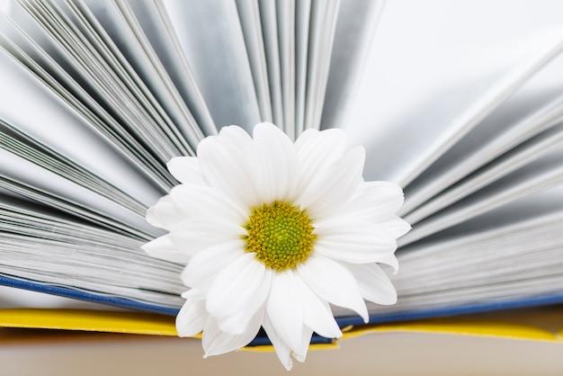 Close-up geopend boek met bloem